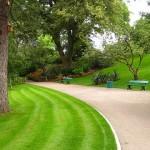 Jardin des plantes 6